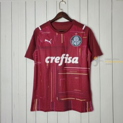 Camiseta Palmeiras Portero...